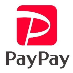 paypaylogp